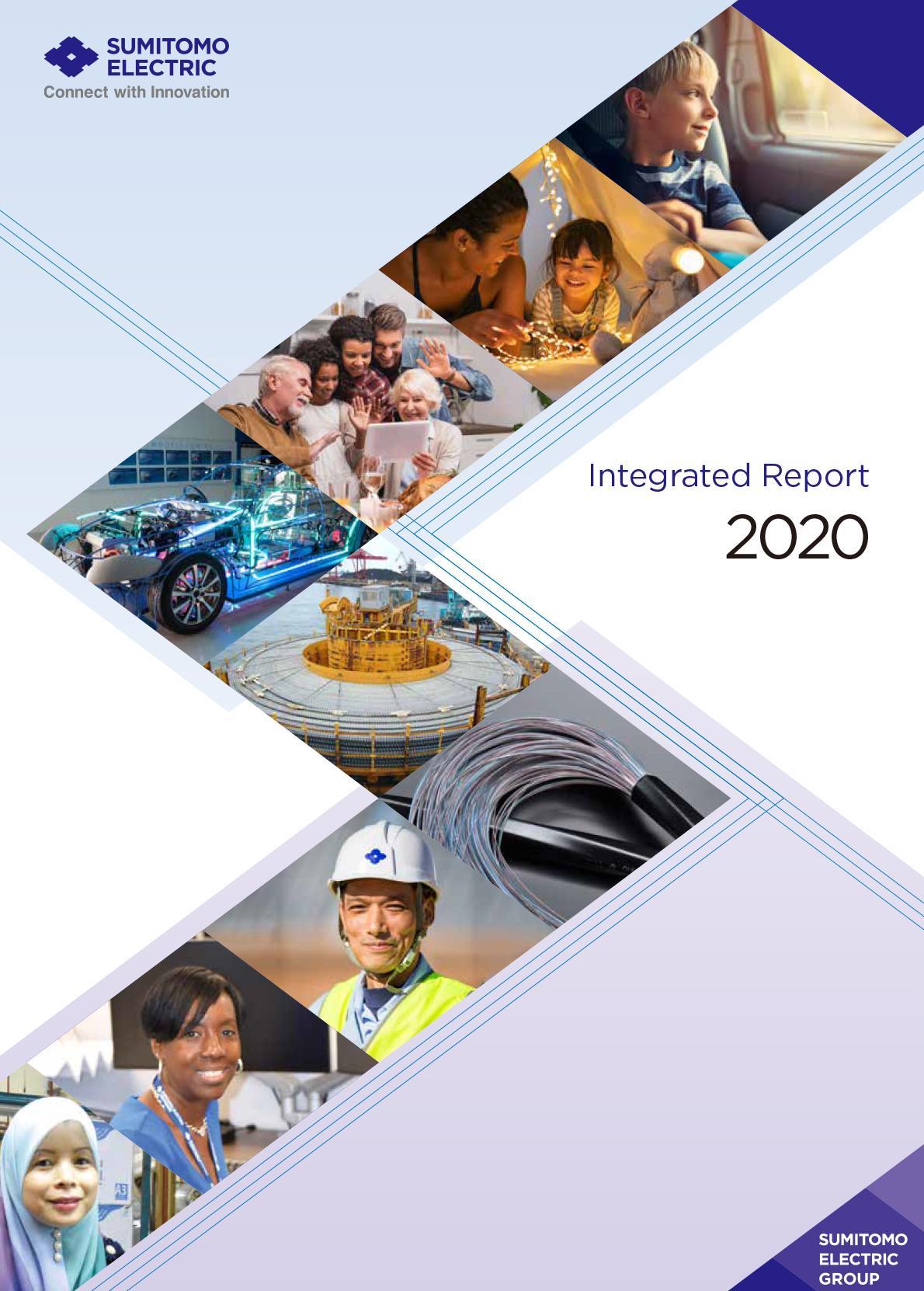 综合报告2020