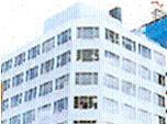 Sumitomo Electric Gokoh Shoji Co., Ltd.