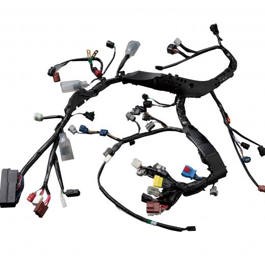 Wiring Harnesses for Two-wheeled Vehicles